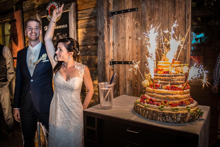 Celebrate the wedding cake