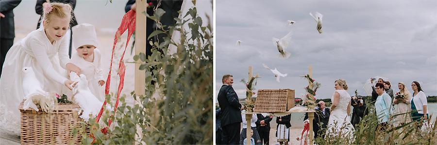 Weiße-Tauben