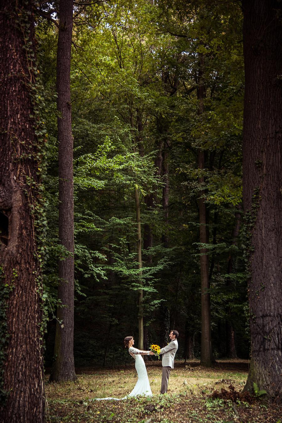 Hochzeitsfotografen in Sachsen