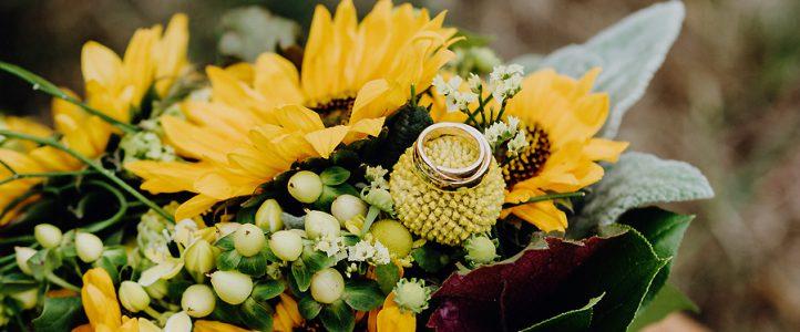 Hochzeit im Schwind Pavillon – Trauung und Brautpaarfotos
