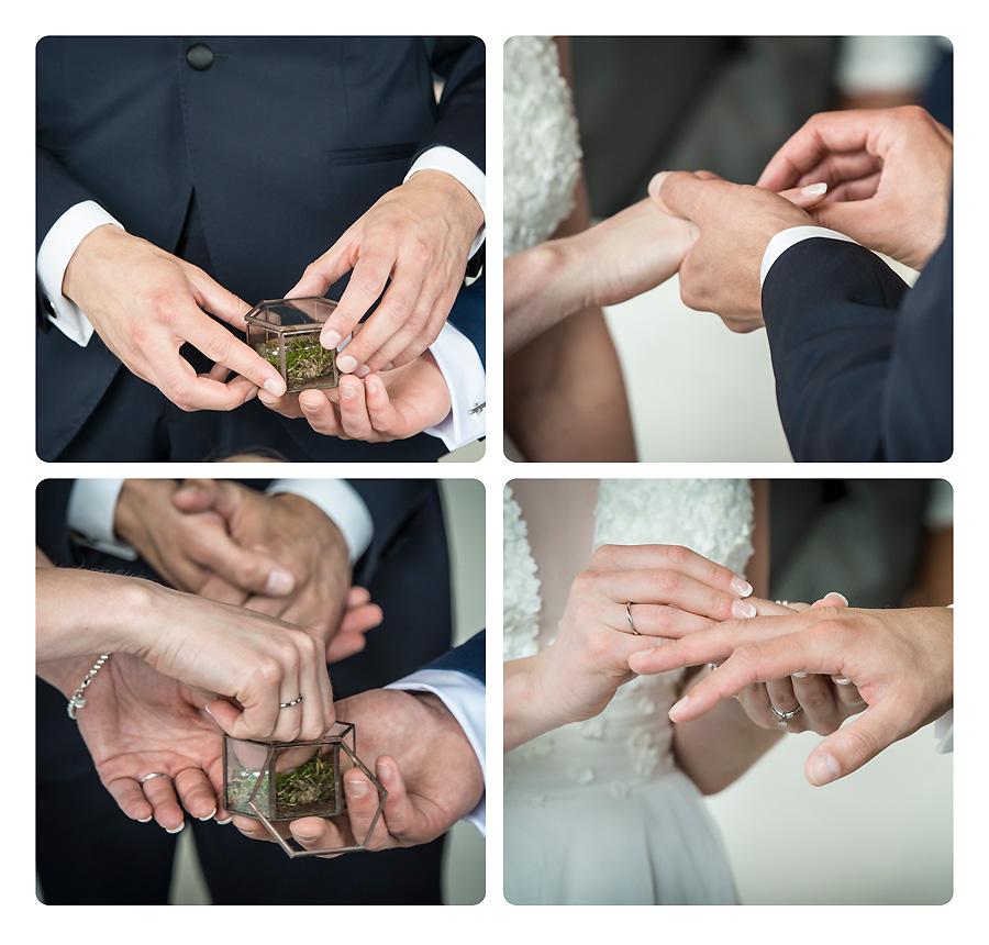 Hochzeit Trauung Eheringe
